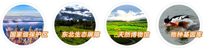中国野生东北虎保护恢复第一优先区 长白山林区是我国重要的森林生态系统之一,总经营面积406.6万公顷。其中,林业用地面积354.3万公顷,占延边州行政区划的82.9%。有林地面积327.1万公顷,有林地蓄积4.05亿立方米,森林覆盖率80.8%。辖区为松花江、图们江、鸭绿江、牡丹江四江之源,是举世闻名的天然博物馆和物种基因库。  长白山林区拥有温带最完整的山地垂直生态系统和寒温带山地垂直生态系统,辖区内陆生野生动物资源丰富,有陆生野生动物367种,其中,兽类63种,鸟类275种,两栖类13种,爬行类