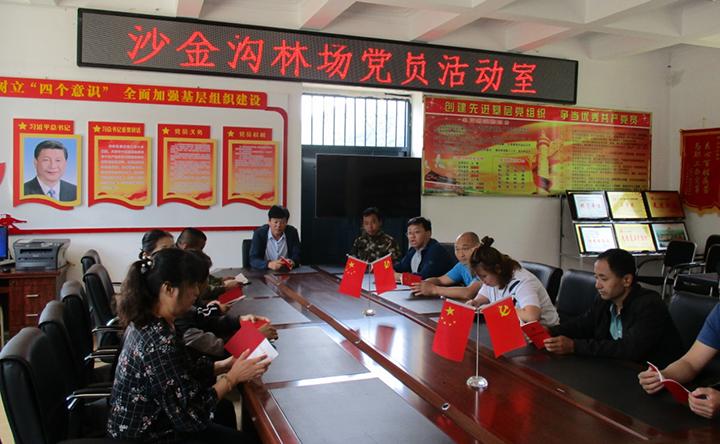 沙金沟党支部组织党员学习党章.png