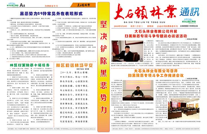 29.大石头林业通讯专刊.jpg