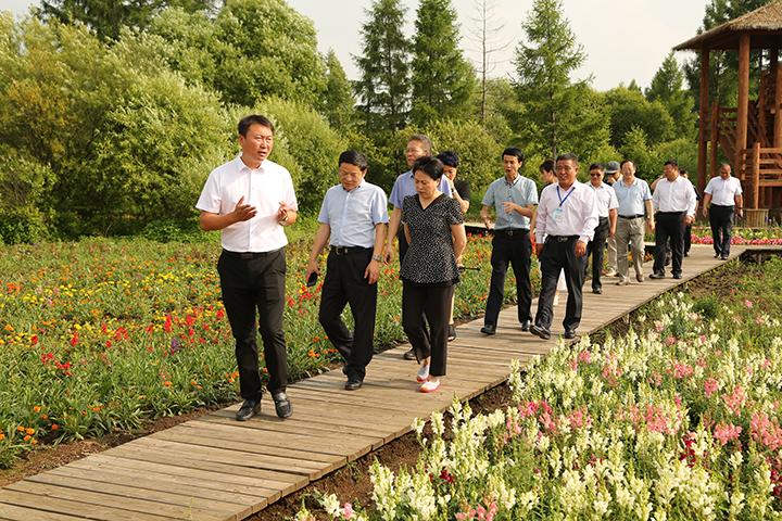 4调研组步行实地察看公司湿地公司建设情况.jpg