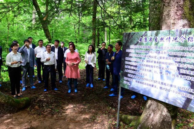 长白山森工集团首个大型矿泉水项目开工建设